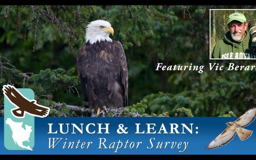 Virtual Lunch & Learn Series – Winter Raptor Survey