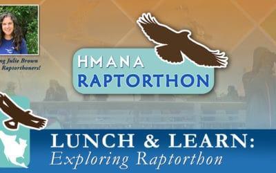 Virtual Lunch & Learn Series – Exploring Raptorthon