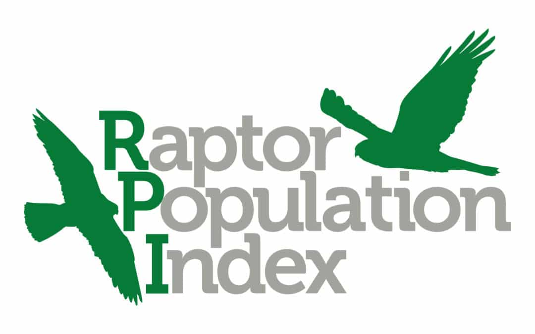 New Analyses Highlight the Conservation Status of North American Raptors
